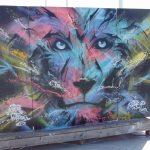 Les arts confondus wimereux 2019